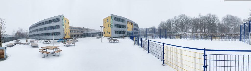 Alkwin in de sneeuw